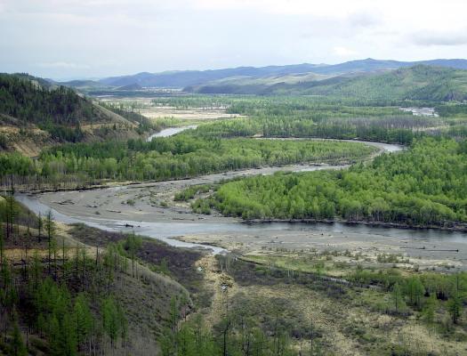 Fluss Amur